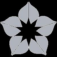 magnolia-medicina-lavoro-ico-home
